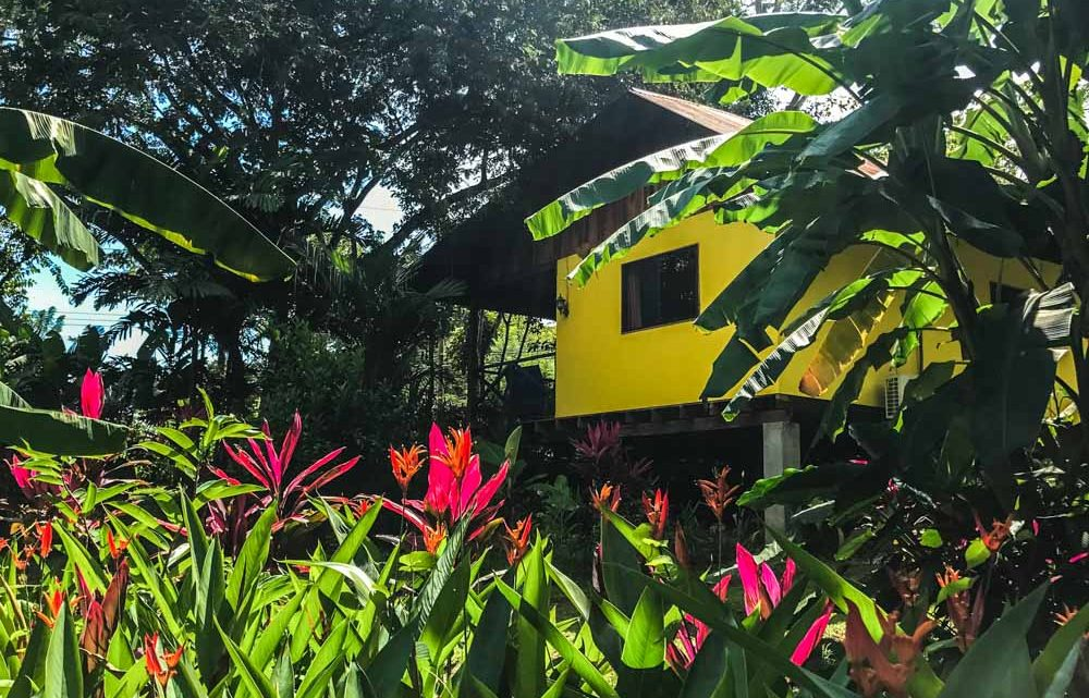 Tropical garden and house for sale in Montezuma Costa Rica
