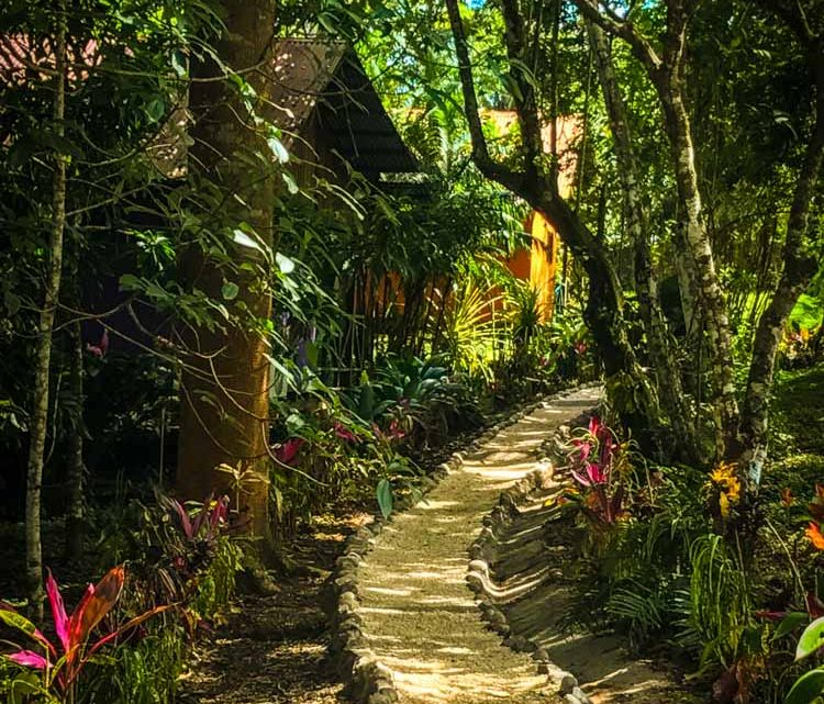 Trail in jungle hotel business for sale