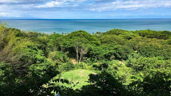 Amazing ocean view property walking distance to the beach
