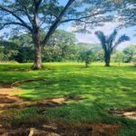 Cabuya lot for sale close to the beach