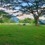 Cabuya Lot for Sale Close to Secret Surf Spot in Costa Rica. Real Estate