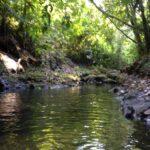 River in ecological farm for sale in Montezuma Costa Rica