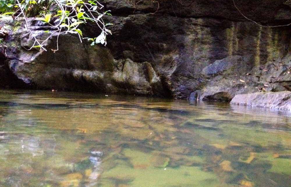 Natural swimming pool in Montezuma Costa Rica real estate