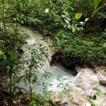Land for sale in Cabuya Costa Rica