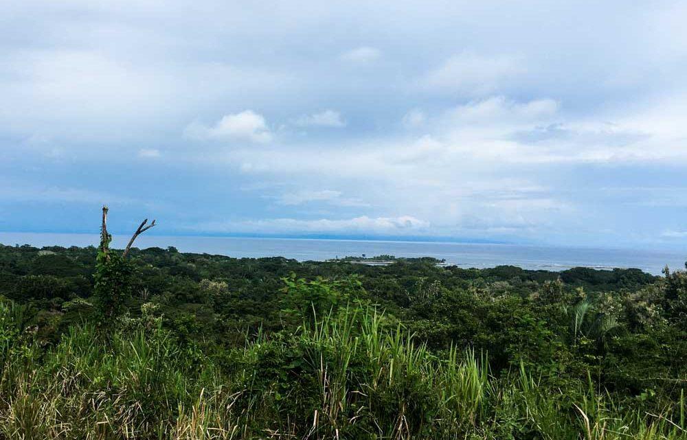 Ocean view farm for sale in Cabuya Costa Rica