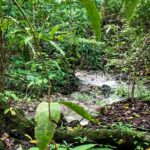 River in ocean view property for sale in Cabuya Costa Rica