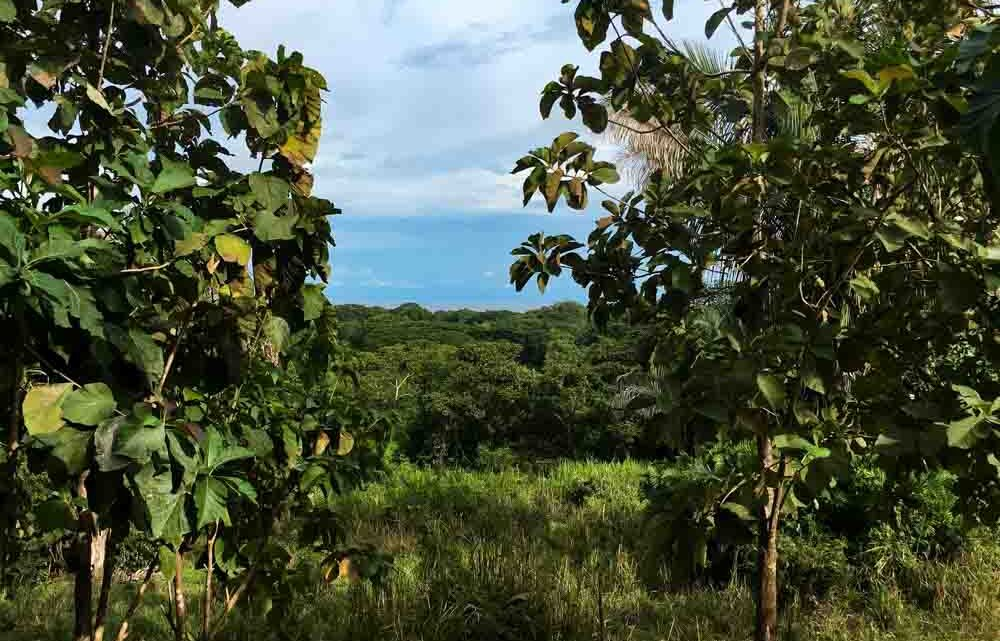 Ocean view real estate for sale in Cabuya Costa Rica