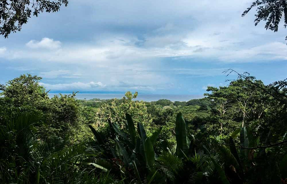 Land with ocean view close to the beach and surf break in Cabuya Costa Rica
