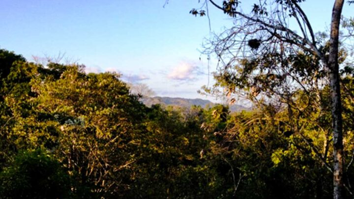 Mountain view in eco-farm for sale in Montezuma Costa Rica