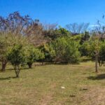 Nature lovers real estate for sale in Montezuma Costa Rica