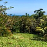 Great ocean view lot for sale in Costa Rica