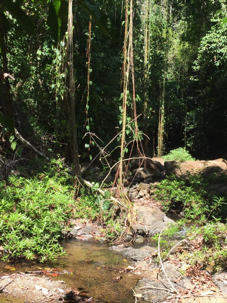 Montezuma property for sale with river access