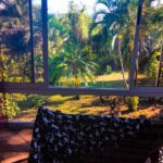 Yard view in Montezuma best property for sale