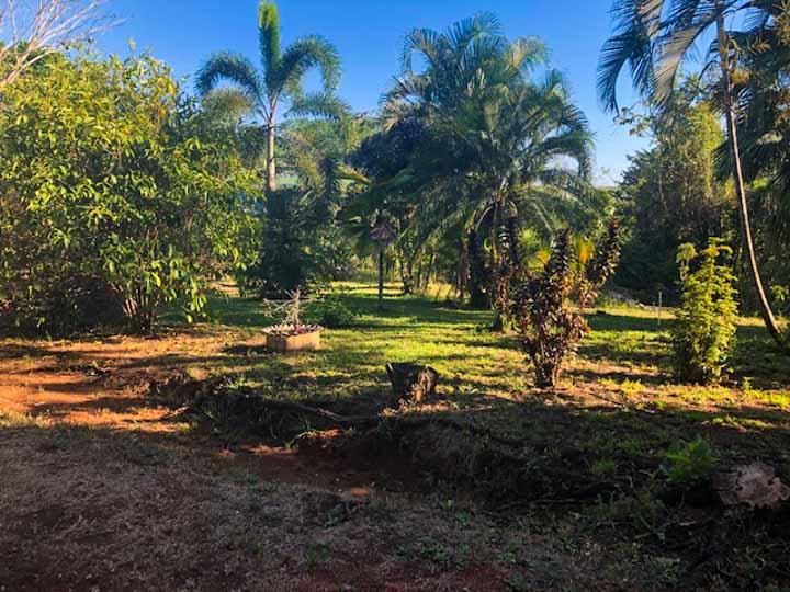 Beautiful garden in Montezuma best property for sale