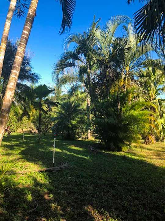 Montezuma best real estate deal