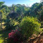 Mature garden in Montezuma house for sale. Best deal