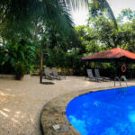Business opportunity for sale in Montezuma Costa Rica